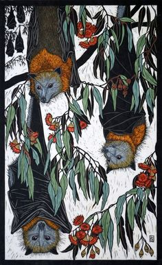 Rachel Newling: Grey-Headed Flying Fox x 43 cm Edition of 50 Hand coloured linocut on handmade Japanese paper Art And Illustration, Illustrations, Linocut Prints, Art Prints, Scratchboard, Australian Artists, Wildlife Art, Of Wallpaper, Printmaking