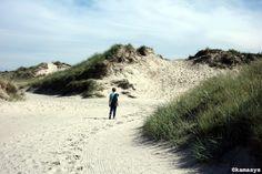 De Slufter - Texel NL