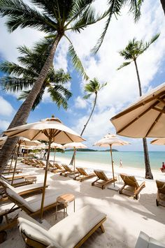 Sareeraya is located on pristine Chaweng Beach in Northern part of Koh Samui. The location is perfect - only less than 10 minutes from the center of all the shopping, entertainment and bars, yet still in nice, clean and quiet area. Also the Airport is only a few minutes away.