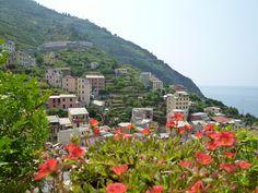 Riomaggiore, Liguria Italia (Luglio) Riomaggiore, Dolores Park, Water, Travel, Outdoor, Italia, Gripe Water, Outdoors, Viajes