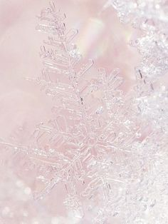 Frozen ★ iPhone wallpaper