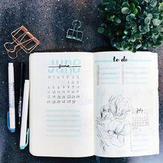 Hello June! . . . . . . . . #vsco #vscocam #bulletjournal #bujo #monthlylog #goals #ideas #planner #bulletjournalideas #bujoaddict…