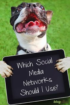 Which social media should I use