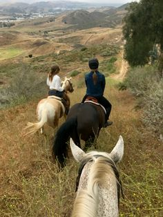 the best view in the world is from a horses back - horseback riding Horse Girl, Horse Love, Animals And Pets, Cute Animals, Jolie Photo, Life Is An Adventure, Nature Adventure, Horse Riding, Trail Riding