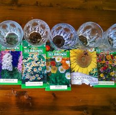 Did you know you can use shot glasses as planters? You can. Here are some great #planthacks you'll want to try again and again #plantnite