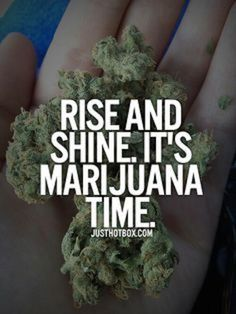 Wake and Bake Yes Yes it is! Have a great day.  #Cannabis #Marijuana #Weed