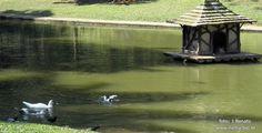 Lagoa do Parque Guinle, no Rio de janeiro