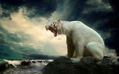 polar tiger