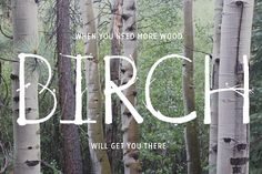 Birch Is Right Here - Fill by BIRH_ Creative on @creativemarket