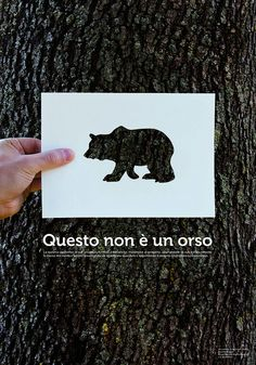 Nice poster: Questo Non È Un Orso by Saverio Rociola, via Flickr