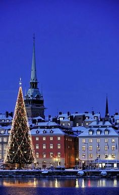 Christmas in Stockholm, Sweden! Christmas around the world! Christmas In The City, Swedish Christmas, Noel Christmas, Christmas Lights, Europe Christmas, Xmas, Christmas Markets, Christmas Traditions, Beautiful Christmas