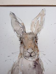 Line and wash hare by Annabel Burton                                                                                                                                                                                 More