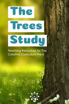 Early Childhood Plus Early Childhood Plus,Trees Study Creative Curriculum These preschool teaching resources for the Trees Study from Creative Curriculum by Teaching Strategies are created with Boardmaker visuals to make learning activities fun for. Creative Curriculum Preschool, Preschool Centers, Preschool Themes, Inclusion Classroom, Social Studies Classroom, Early Childhood Activities, Childhood Education, Teaching Strategies Gold, Teaching Resources