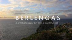 BERLENGAS e o TRABALHO DA SPEA PARA A CONSERVAÇÃO. VERSÃO PORTUGUESA.  Curta-metragem documental inserida na série de documentários sobre os grupos de conservação de vida selvagem que trabalham em Portugal - CONSERVAR PORTUGAL. Neste episódio vamos seguir uma equipa da Spea através do magnifico arquipélago das Berlengas