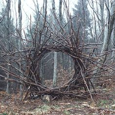 Land art, Andy Goldsworthy