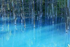 青い池(北海道) - Google Search