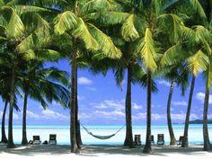 Aitutaki, Cook Islands, New Zealand 写真プリント