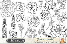 Succulent Outlines - Photoshop Brush by FishScraps on Creative Market