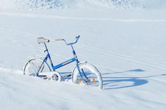 Blue bicycle in the snow. This one must have been difficult to set up, or did they really find a bike sitting in a snowy field like that?