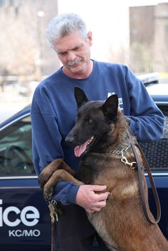 Kansas City Missouri Police Department- Canine Unit. This is Jodi our new Belgian Malinois
