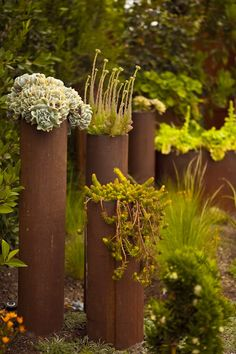 I'm totally stealing this idea in my garden one day. iron pipe, art garden, rusti pipe, pipe planter, gardens, magic garden, planters, steel pipe, design