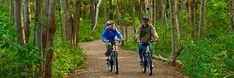Two cyclists bike along a trail in a wooded area of PEI National Park. Prince Edward Island, Canada Travel, Trail, National Parks, Camping, Places, Cyclists, Vacation Ideas, Bike