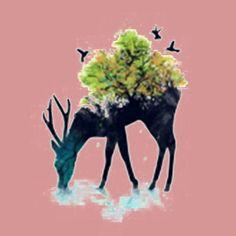 Nature Deer