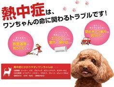 ペットライン 愛犬の熱中症チェッカー|AEONPET ONLINE