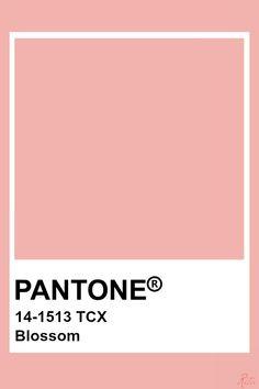Pantone Blossom