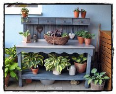 ein cooler pflanztisch aus paletten selbst gebaut. Black Bedroom Furniture Sets. Home Design Ideas
