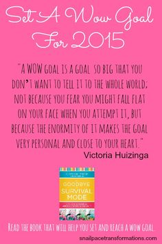 Set a wow goal for 2015. This book will help you set goals and reach them. Go from living in the day to day as overwhelmed to living day with intention and success.