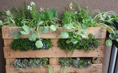 pallet-garden.png.400x300_q90_crop-smart.jpg (400×248)