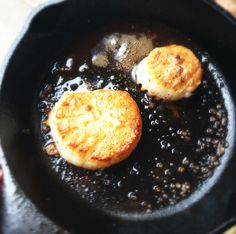 cooking with scallops (and duck fat)
