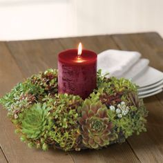 Send some lovely LIVING holiday decor as a Christmas gift. Succulent Holiday Centerpiece | Christmas Wreaths Gifts | Harry & David