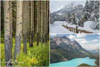 When Is The Best Time To Visit Banff National Park And The Rocky Mountains