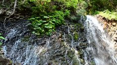 Falls in mountains  #falls #park #rainforest #green #view #water #wild #natural #national #tropical #river #stormy #amazing #wonder #power #flow #brown #destinations #valley #majestic #ecology #clean #clouds #sightseeing #waterfall #famous #strength #wilderness #blue #mist #beauty #overcast #sky #scenic #tourism #scene #nature #large #environment #big #splash #landscape   #Video #footage #stock #pond5