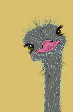 Ostrich - Devekuşu tryout