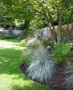 30 Wonderful Backyard Landscaping Ideas - Like the foreground & fence, would remove some messy looking plants in background