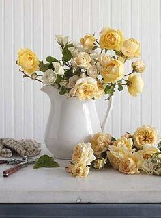 Harvest Gold Roses~