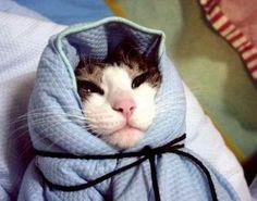 에궁~추워라~