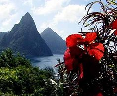 The Twin Petons of St. Lucia. Beautiful. The drive up wasn't easy. Car Sick. I'm thinking it was worth it.