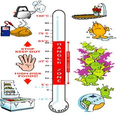Bacteria and Temperature Food Safety Training, High Risk, I Foods, Science, Flag, Science Comics