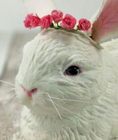 "Торт ""Белый кролик"""