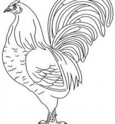 Realistic Farm Animal Coloring Pages | Roosters | Farm ...