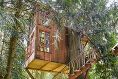 7 Tree Houses You Can Spend The Night In | Trillium TreeHouse – Washington State