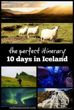 Take glacier hikes, see the Northern Lights, scuba between two continents; ride horses and more in Iceland - your next adventurous European destination Usa Places To Visit, See The Northern Lights, European Destination, European Vacation, Iceland Travel, Cruise Vacation, Vacation Ideas, Koh Tao, Family Travel