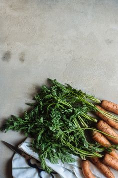 cenouras com rama
