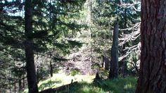 Stress wegwandern auf stillen Wegen. Stiller Weg1: Mystischer Rosengarten - innere Ruhe finden