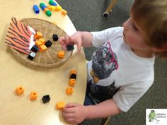 Exploring animal coverings with cubes