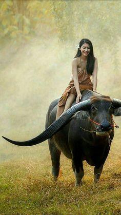 jokes on a budget dslr photography tutorials pdf in Wild Animals Photography, Indian Photography, Art Photography, Photography Lighting, Jewelry Photography, Animals And Pets, Cute Animals, Foto Picture, Cutest Animals